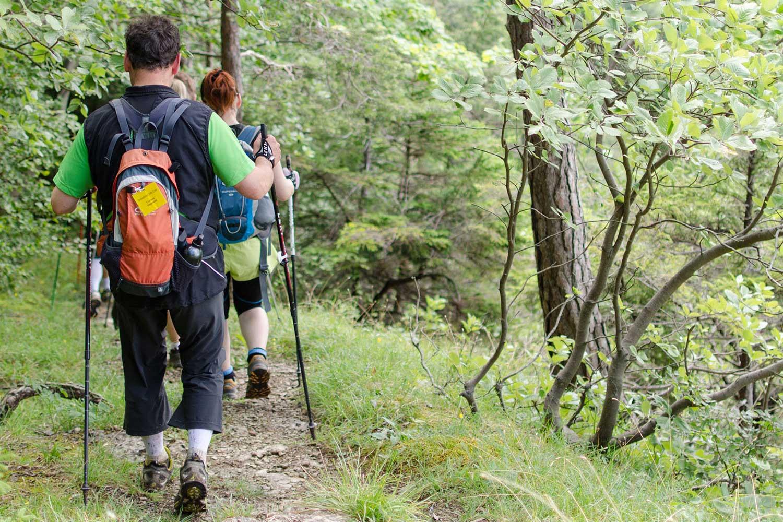 kurs-nordic-walking